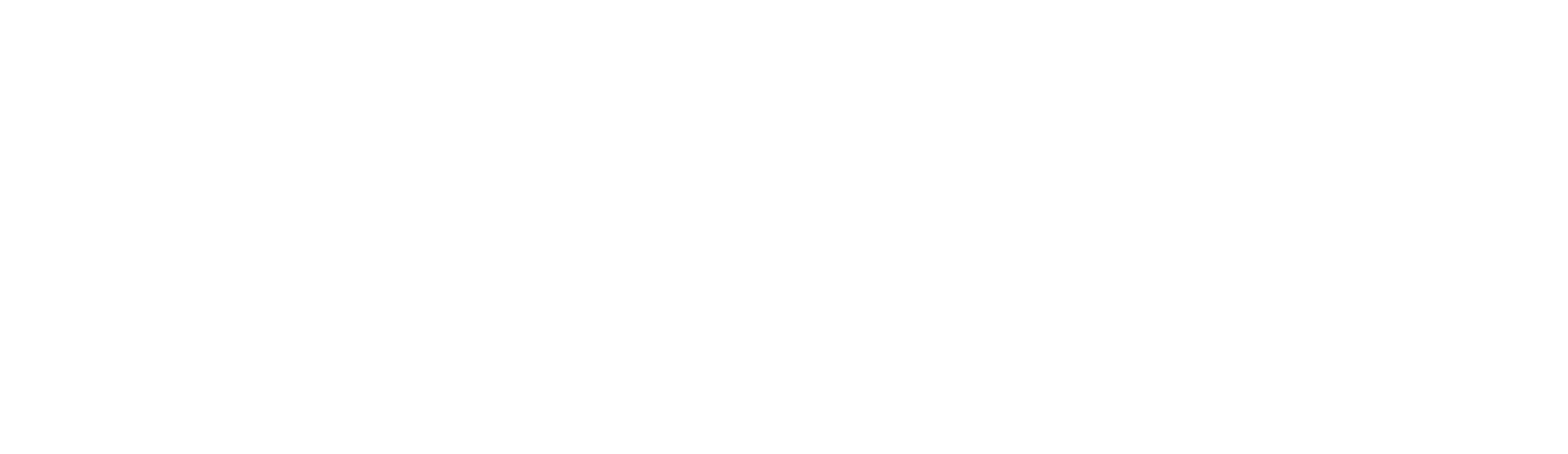 Unico Fibernet